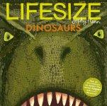 129. Sophy Henn: Lifesize Dinosaurs